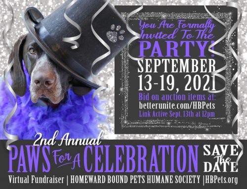 Paws For a Celebration 2021