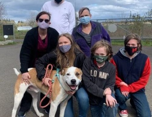 Happy Tails Newsletter: April, 2021